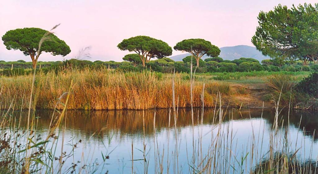 Parque Natural de la Maremma